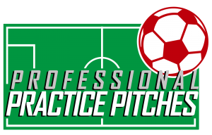 Professional Practice Pitches Logo